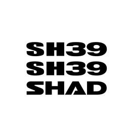 RECAMBIO CONJUNTO ADHESIUS SH39