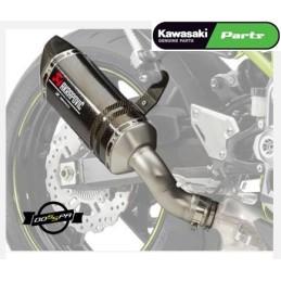 Akrapovic Carbono Original Kawasaki Z900